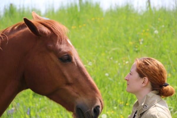 Kommunikation - Coaching mit Pferden