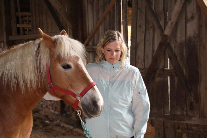 Wirkung von Coaching mit Pferden