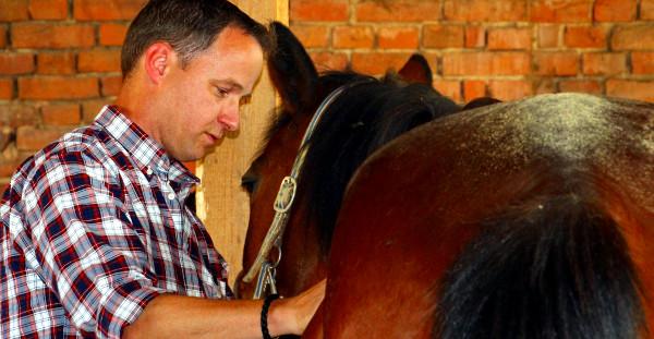 Führungskräfte Coaching mit Pferden